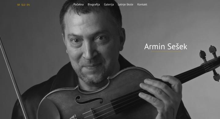 Armin Sešek, prezentacija profesora violine